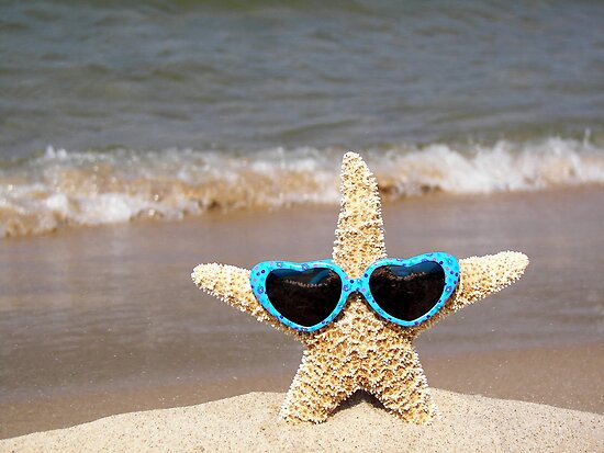 Stylin' Starfish by Maria Dryfhout