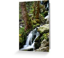 Wet Weather Cascade Greeting Card