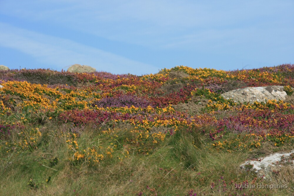 Colourful Lands End by Justine Humphries