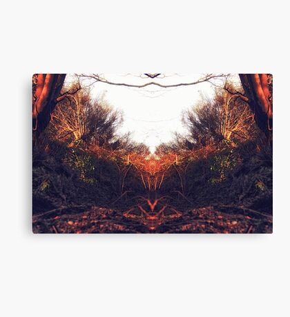 Reflection on nature Canvas Print