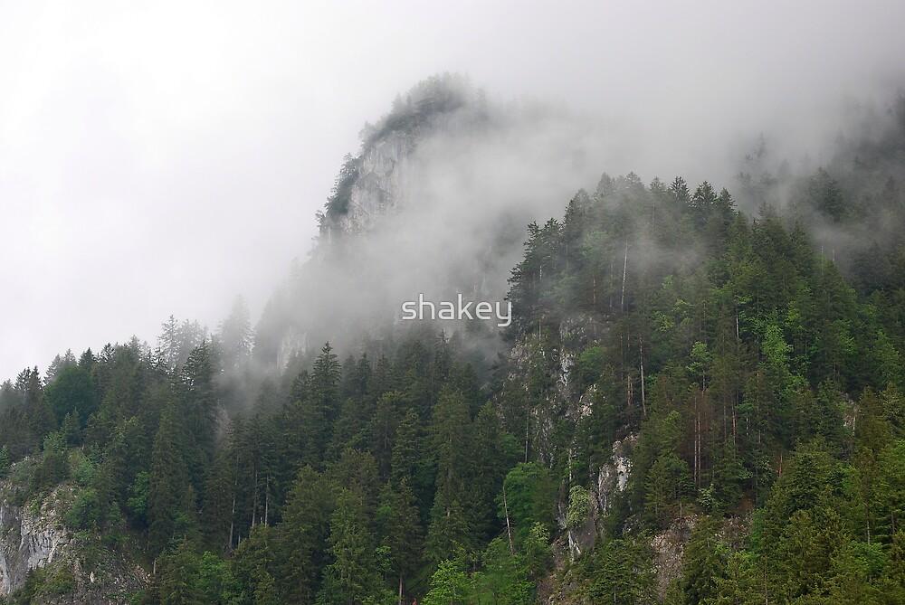 Mountain Mist by shakey