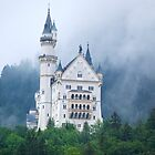 Castle in the mist 2 by shakey