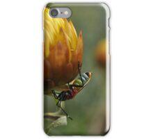 Colourful macro bug  iPhone Case/Skin