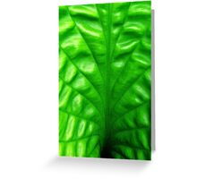 LEAF by design Greeting Card