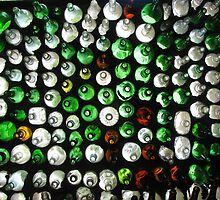 The Bottle House by danita