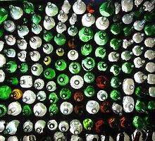 The Bottle House by danita