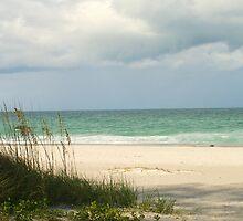 Longboat Key, FL by blacroix