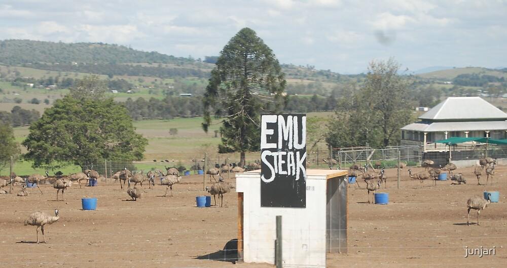 Emu Steaks by junjari