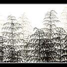 Hemlock Mist by Sladeside