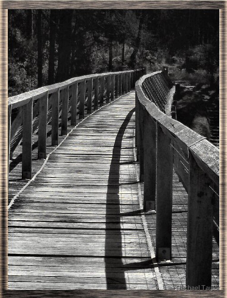 Footbridge by Rachael Taylor
