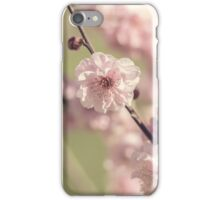 Apple Blossoms in Spring iPhone Case/Skin