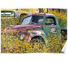 Jerome, Az - Flowers for Studebaker Poster