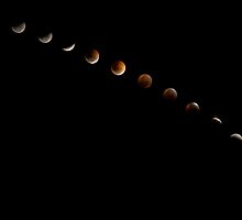 Phases of the Eclipse by David de Groot