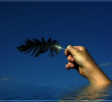 The Feather by shall