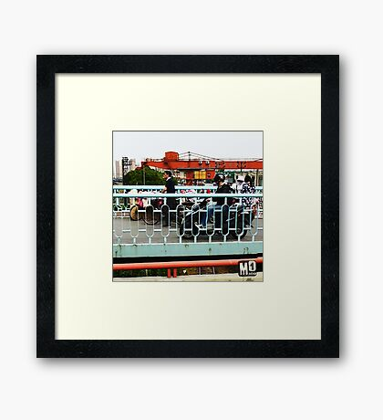 china colors Framed Print