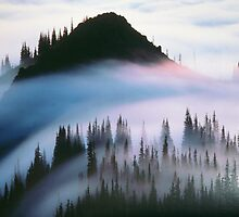 FOG by royce
