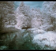 IR River by Pestbarn