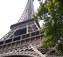 Eiffel Tower by SuziBryars