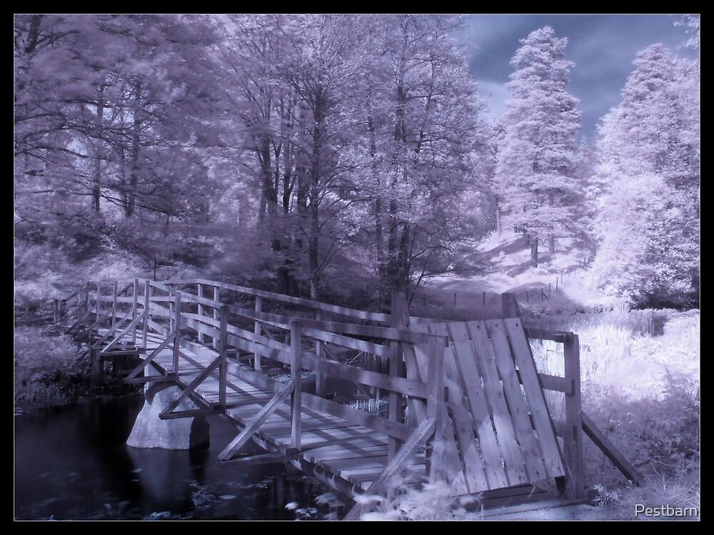 IR Bridge II by Pestbarn