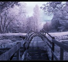 IR Bridge by Pestbarn