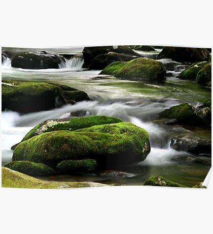 Mossy River Rocks Poster
