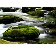 Mossy River Rocks Photographic Print