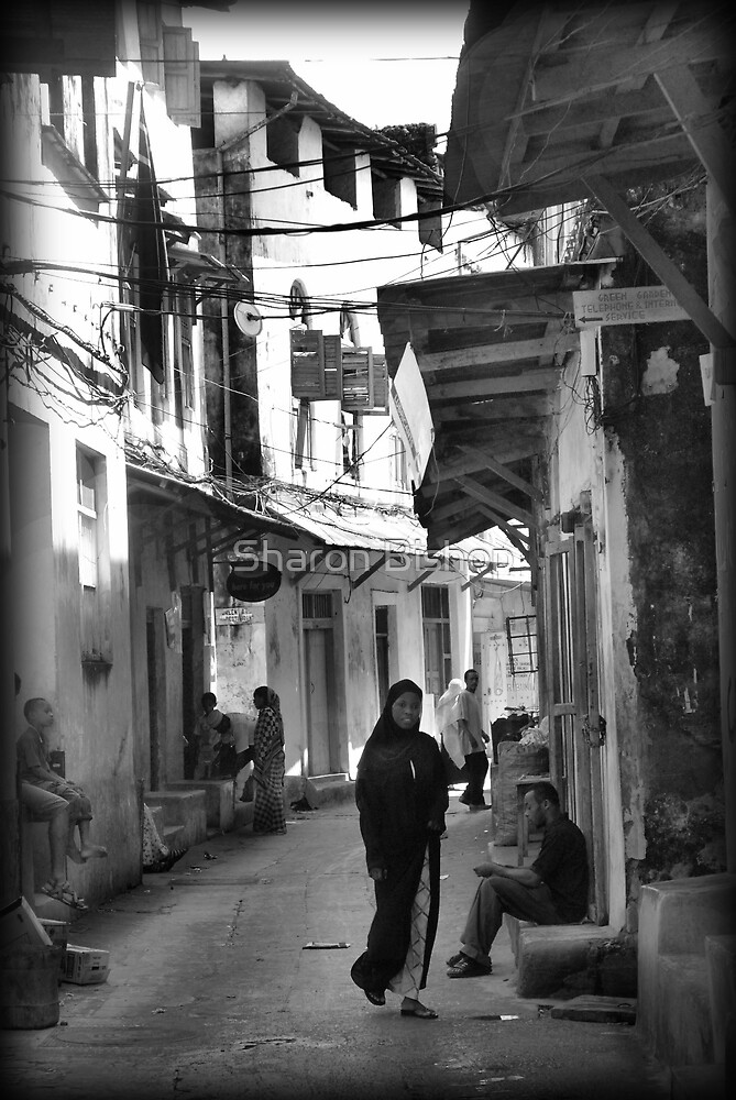 Stonetown experience by Sharon Bishop