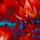 """""""Inner World"""" by Karen Cougan"""