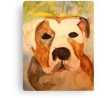 Pit Bull Watercolor Canvas Print