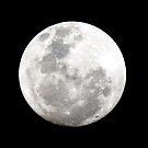 Full Moon by Evan Malcolm