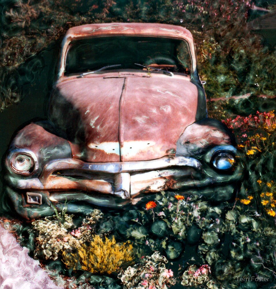 Old Car and Flowers by Terri Foster
