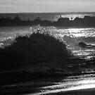 B & W Surf by KarenDinan