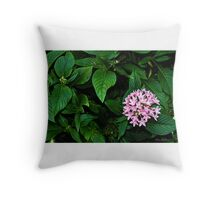 Egyptian Star Cluster Throw Pillow