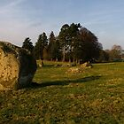 Long Meg Stone Circle by Stephen Smith