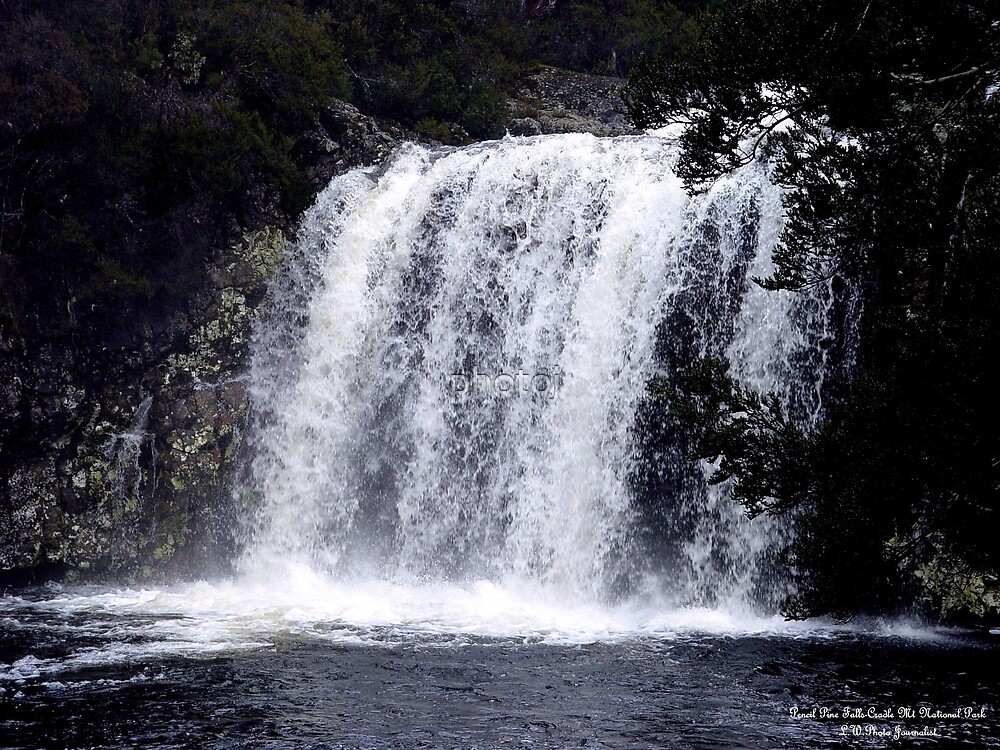 photoj Tasmania Pencil Pine Falls by photoj