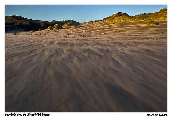 Sandstorm at Wharariki Beach by Robyn Carter
