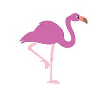 Flamingo by therealprudence