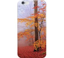 Beech Forest. November. iPhone Case/Skin