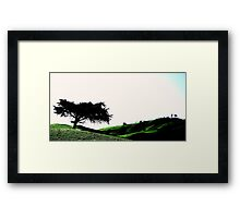 The Cedar Of South Gippsland Framed Print