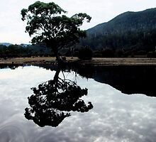 Lake St Clair Tasmania by jkexpress