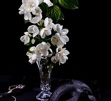 Jasmine flowers by torishaa