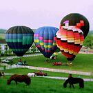 Balloon Dreams 3 by Rodney Lee Williams