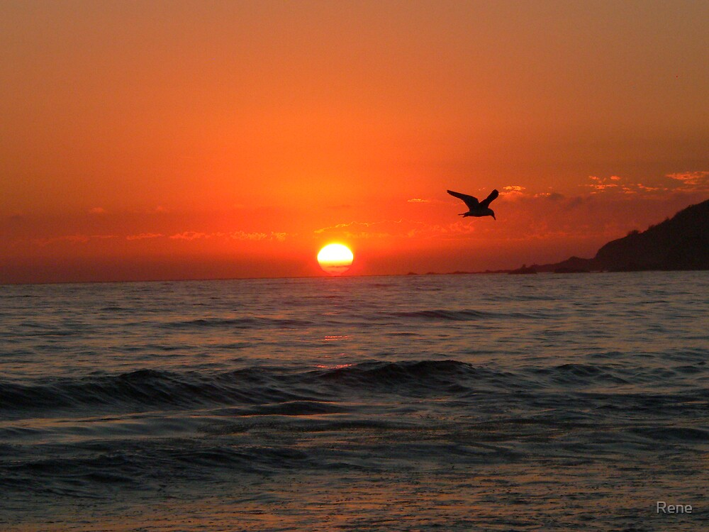 A Byron sunrise by Rene