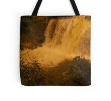 Medina Falls,  Medina, NY Starr1949 redbubble community photo photography art amber sun water falls waterfalls  Tote Bag