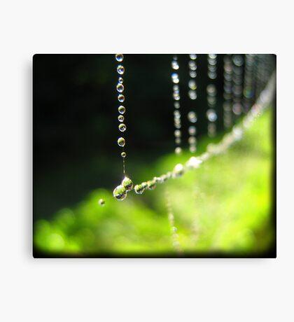September Rain Canvas Print