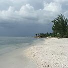 Beach at Boca Grande Florida by Janice Makofski