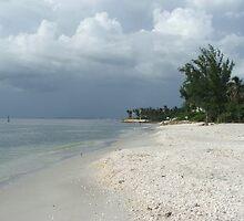 Beach at Boca Grande Florida by Janice Makofski