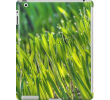 Morning Grass 4 iPad Case/Skin