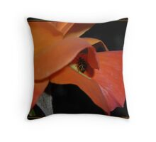 Beetle on a Rose Throw Pillow