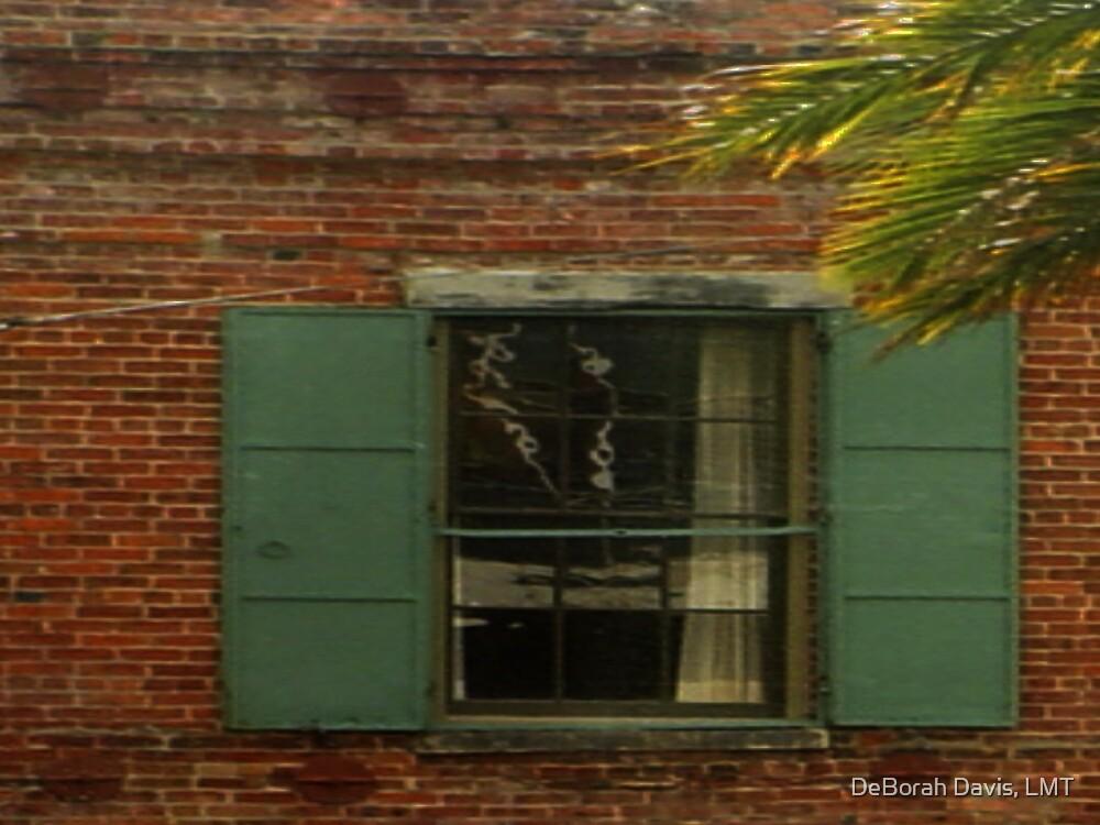 Window to Window by DeBorah Davis, LMT